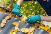 Cleaning gutters from leaves — Stock Photo
