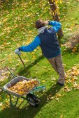 Lazy garden cleaning — Stock Photo