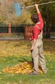 Finished garden raking — Stock Photo