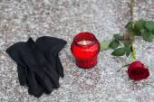 Snitch, gloves and rose — Stock Photo