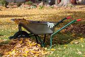 Cleaning equipment in a garden — Stok fotoğraf