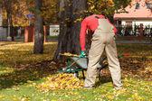 Working gardener in a garden — Stock Photo