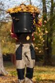 Bucket full of autumnal leaves — Stok fotoğraf
