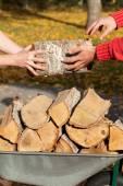 Wheelbarrow full of firewood — Stok fotoğraf
