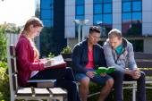 Diverse students during sunny day — Stock Photo