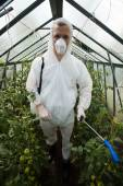 Gardener in protective clothing — Stock Photo