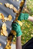 Gardener fixing rain gutter — Stock Photo