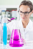 Lab technician during work — Stock Photo
