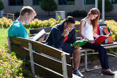 Young people studying to the exam — Stock Photo