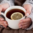 Tea with lemon on a cold day — Stock Photo #58185205