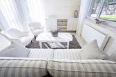 The cozy and elegant living room  — Stock Photo