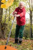 Pensioner working in garden — Stock Photo