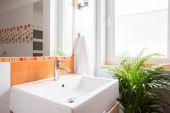 Ceramic wash basin — Stock Photo