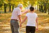 Elderly marriage strolling in park — Stock Photo