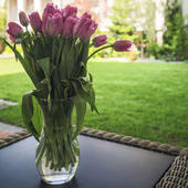 Bouquet of violet tulips — Stock Photo