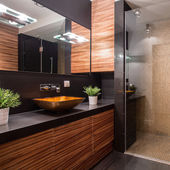 Bathroom with fancy shower — Stock Photo