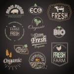Organic  farm fresh food — Stock Vector #65886895