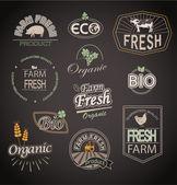 Organic  farm fresh food — Stock Vector