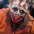 Постер, плакат: Zombie Day of walking dead