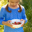 Child with a bowl of strawberries — Stock Photo #76027389