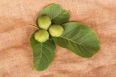 Three green nuts — Stock Photo