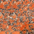 Granite texture design - brown seamless stone abstract surface g — Stock Photo #60454837