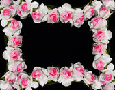Frame made of paper roses — Stock Photo