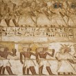 Hieroglyphics in Karnak — Stock Photo #59240059