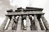 Temple of Neptune in black and white the famous Paestum archaeol — Stock Photo