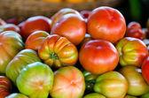 Italiaanse tomaat — Stockfoto