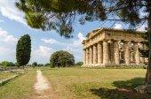 パエストゥム、ヘラの神殿の遺跡。イタリア — ストック写真
