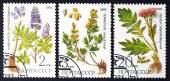 USSR - CIRCA 1985: a series of stamps printed in USSR, shows herbs, CIRCA 1985 — Stock Photo