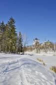 View of the Orthodox Church — Foto de Stock