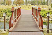 View of the beautiful bridge over the lake — Stock Photo