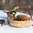 Tit in winter on snow eats sunflower seeds and nuts. — Stock Photo #52274665