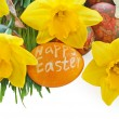 Daffodils, painted Easter eggs isolated on white background. — Stock Photo #66412855