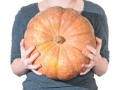 Woman holds in hands of large ripe orange pumpkin — Stock Photo
