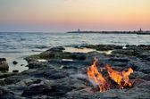 Fire on the seashore at sunset — Stockfoto