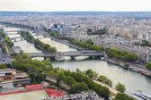 Paryż ptaka — Zdjęcie stockowe