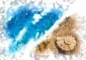 在海滩上的贝壳 — 图库矢量图片