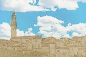 Panorama of Siena, Tuscany, Italy — Stock Vector