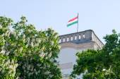 Hungarian Flag in the Tower — Stock Photo