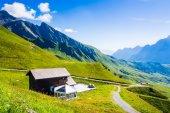 Swiss skönhet, ängar under jungfrau — Stockfoto