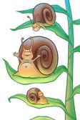 Snails in the morning — Stock Photo