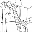 Giraffe eating leaves from the tree — Stock Photo #52858175