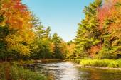 Mersey river in fall — Stock Photo
