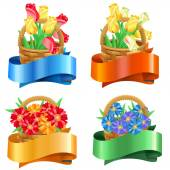Bouquets of tulips and gerberas in baskets with festive ribbons — Stock Vector