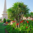 Постер, плакат: Menorca Balearic Islands: flowers and the obelisk in Es Born Square in Ciutadella