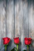 Valentine: Three Roses On Grunge Background — Stock fotografie