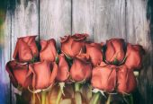 Valentine: Dozen Roses Bouquet On Rustic Background — ストック写真